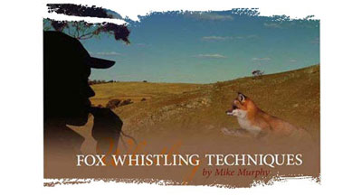 Best fox whistles - in no particular order, because they are all very good - Tenterfield, Tin Button and Scotch Fox call...
